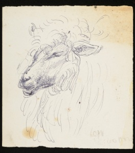 CHA/P/725. Sketch of a sheep, Duncan Grant, date unknown. © The Charleston Trust.